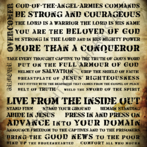 Warrior Manifesto Wall Art 16 x 20